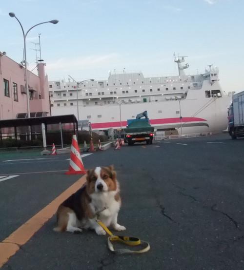 Ferry6